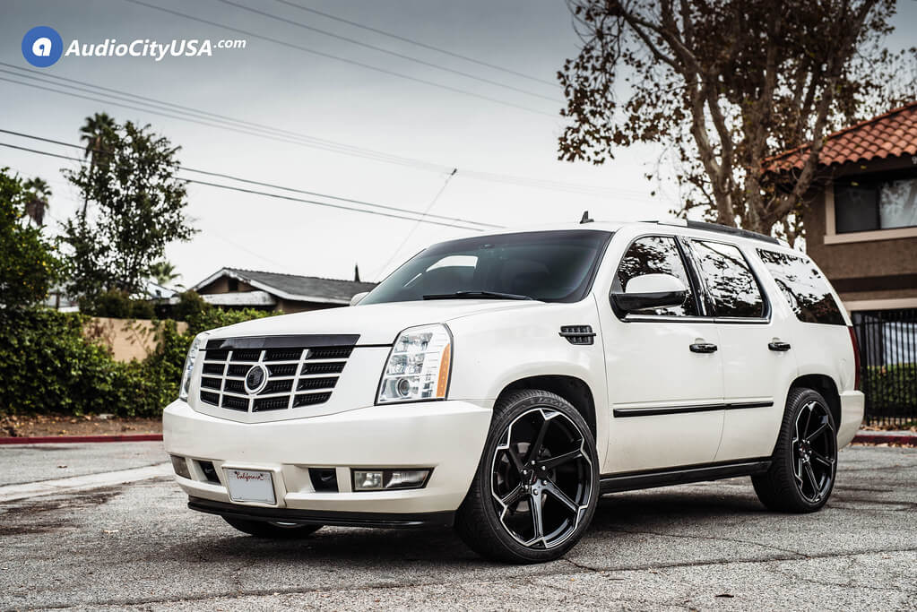 Giovanna Dalar X on Cadillac Escalade