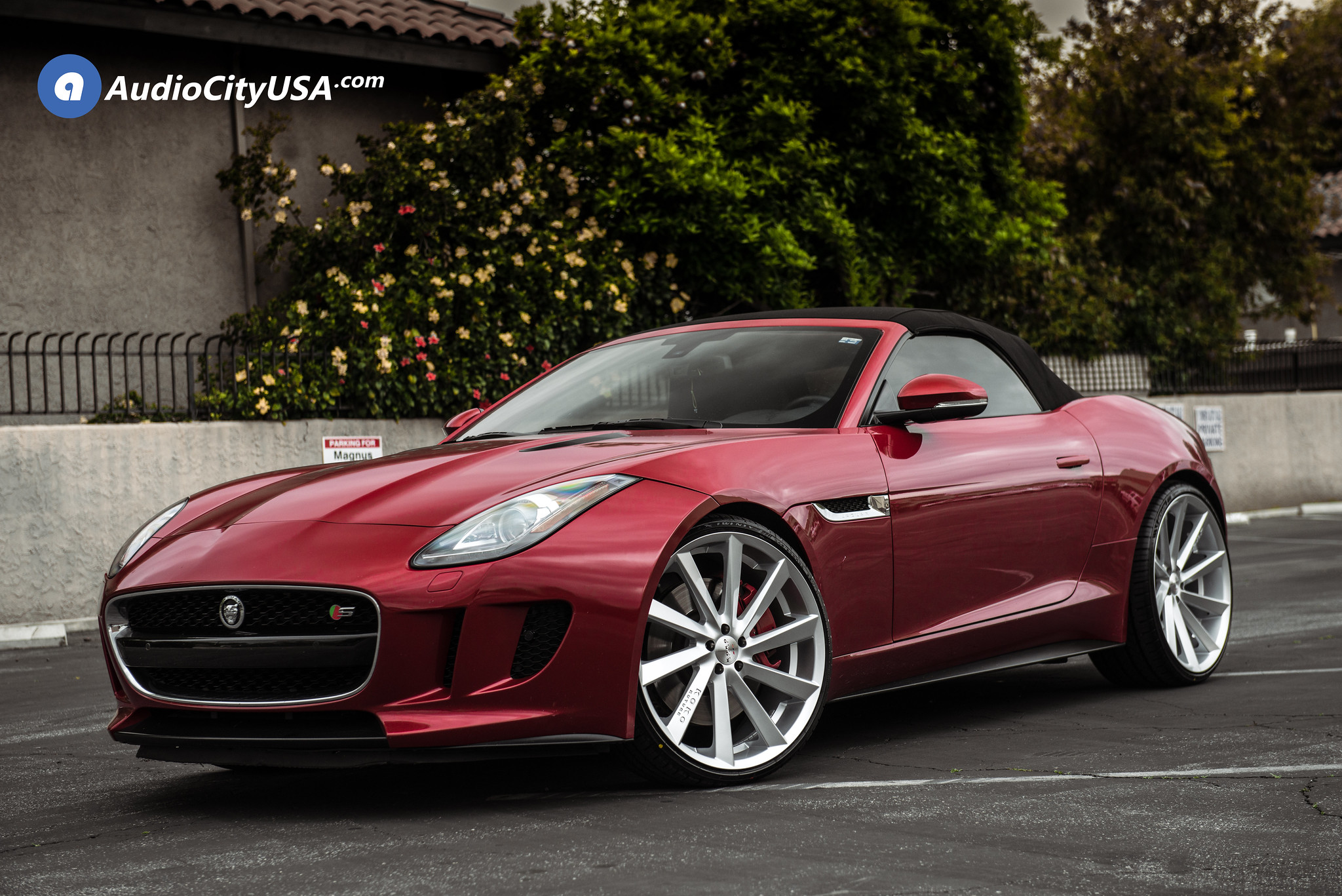 Koko Kuture Kapan Silver on Jaguar F-Type